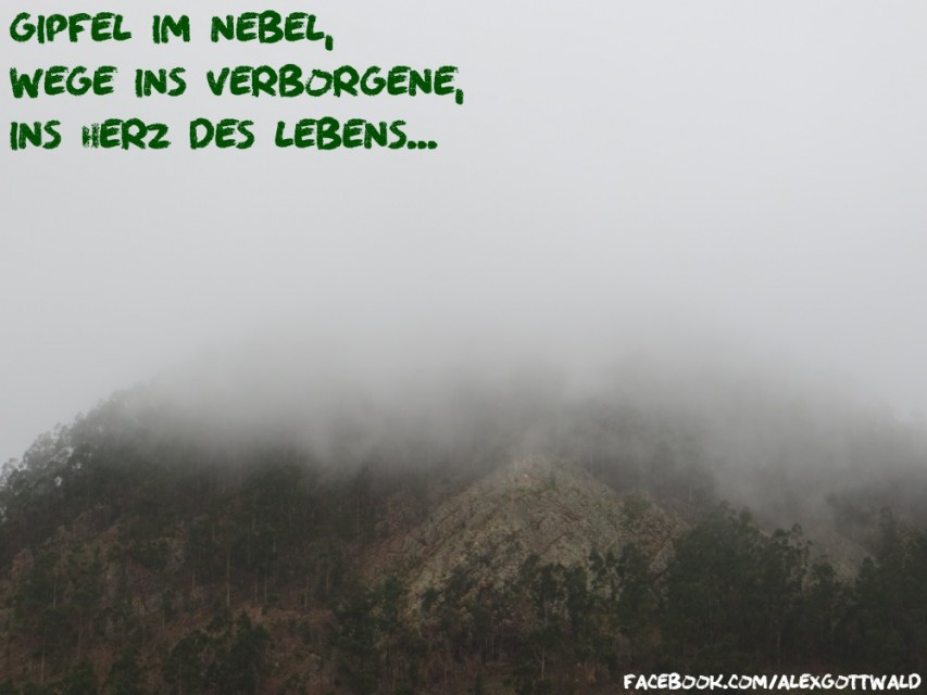 Gipfel im Nebel Haiku Alexander Gottwald