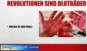 Revolutionen sind Blutbäder - Die Tragödie der schlafenden Revolutionäre