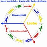 Individuationstrigon LEBE Rechtsdrehung