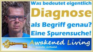 Alexander Gottwald Was bedeutet Diagnose